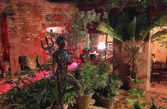 Interior Garden at The Gallery Inn